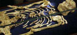Hallan Esqueleto Humano de hace 3,6 Millones de Años